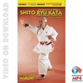 Shito Ryu Karate Pinan Kata and Bunkai Vol 2