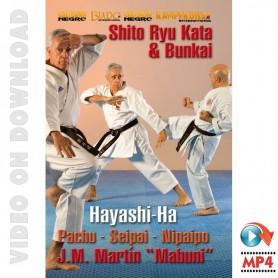 Karate Shito Ryu Hayashi-Ha. Kata und Bunkai