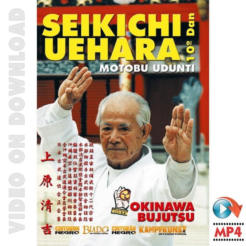 Okinawa Bujutsu Motobu Udunti