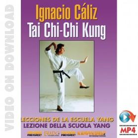 Tai Chi Yang Style & Chi Kung Vol 1