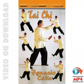 Tai Chi Yang Style & Chi Kung Vol 2