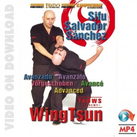 Wing Tsun Advanced TAOWS Academy