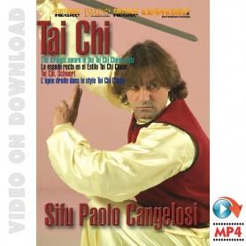 Tai Chi Beijing Jen The Straight Sword