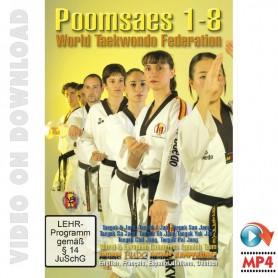 Taekwondo WTF Pumses Basicos FET