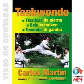 Taekwondo ITF- Técnicas de perna