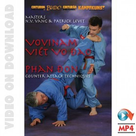 Viet Vo Dao Phan Don Counter Techniques