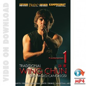 Wing Chun Traditionnel vol 1