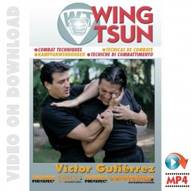 WingTsun Tecnicas de Combate