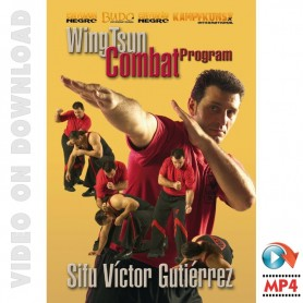 WingTsun Programa de Combate