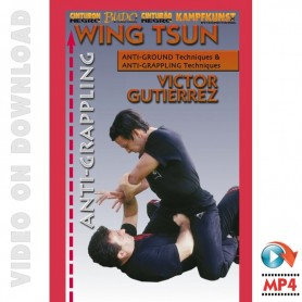 WingTsun Anti-grappling