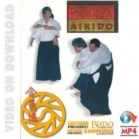 Aikido Yamada Seminar Peru