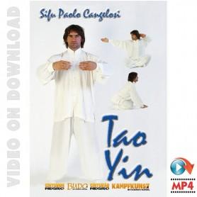 Tao Yin Internal Kung Fu