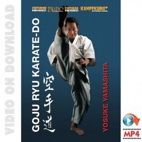 Goju Ryu Karate Yamashita