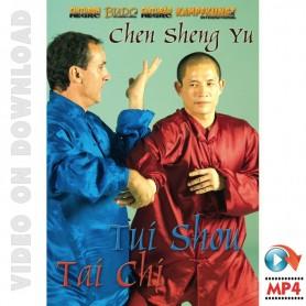 Tai Chi Chen Style Tui Shou