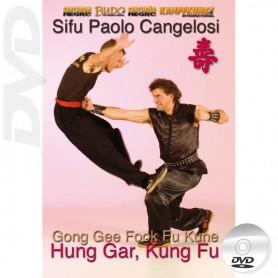 DVD Hung Gar Kung Fu Gong Gee Fook Fu Kune Form