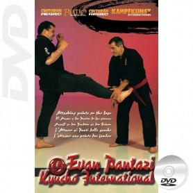 Kyusho Jitsu Points on the Legs