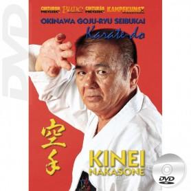 DVD 沖繩剛柔流武會空手道