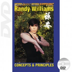 DVD Wing Chun Kung Fu Concepts et pricipes