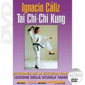 DVD Tai Chi Yang Style & Chi Kung Vol1