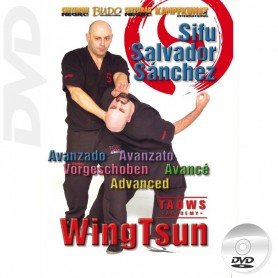DVD Wing Tsun Advanced TAOWS Academy