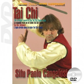 DVD Tai Chi Beijing Jen The Straight Sword