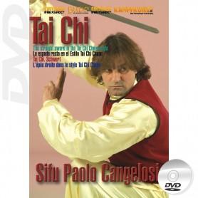DVD Tai Chi Beijing Jen The Straight Sword