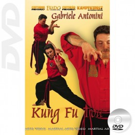 DVD Kung Fu Toa Forms & applications Vol 1