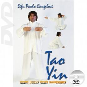 DVD Tao Yin Internal Kung Fu