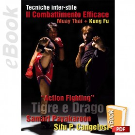 e-Book Dragon & Tiger. Muay Thai Kung Fu, Action Fighting. Italiano
