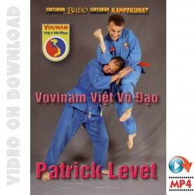 Vovinam Viet Vo Dao Saber and Halberd