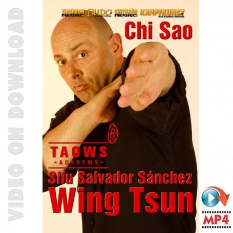 Chi Sao Wing Tsun TAOWS Academy