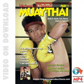 Muay Thai Vol.1. Mechanics of Basics, Hands, Shifting and Elbows