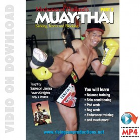 Muay Thai Vol.2. Mechanics of kicking knees and Blocking
