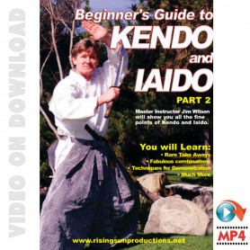 Beginner's Guide to Kendo and Iaido