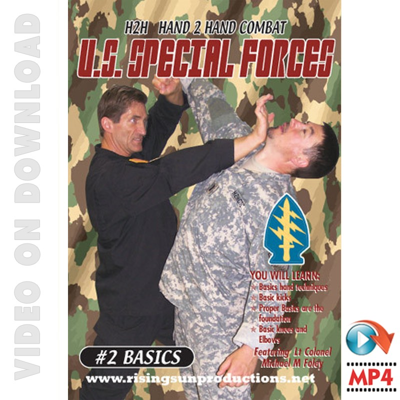 Download Video US Special Forces Hand to Hand Combat Basics