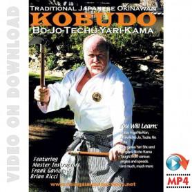 Traditional Japanese Okinawan Kobudo Bo-Jo-Techu-Yari-Kama