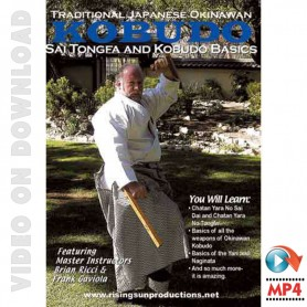 Traditional Japanese Okinawan Kobudo Sai Tongfa and Kobudo Basics