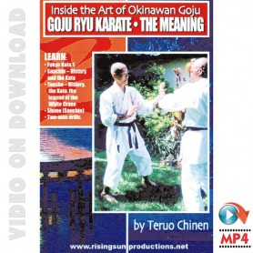Goju Ryu Karate Okinawa, the Meaning