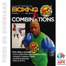 Mastering Boxing Combinations