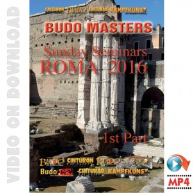 Budo Masters Meeting Artes Marciales 2016. Vol.4