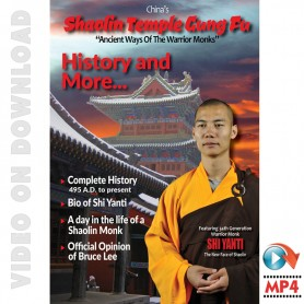Shaolin Temple Kung Fu History and more