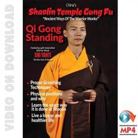 Shaolin Temple Kung Fu Qi Gong Standing