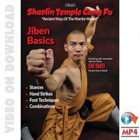Shaolin Temple Kung Fu Jiben Basics