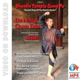 Shaolin Temple Kung Fu Da Hong Quan Erlu