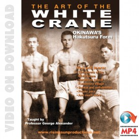 The Art of The White Crane
