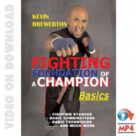 Fighting Foundation of a Champion Basics