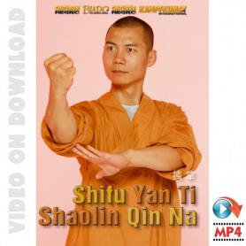 Shaolin Chin Na