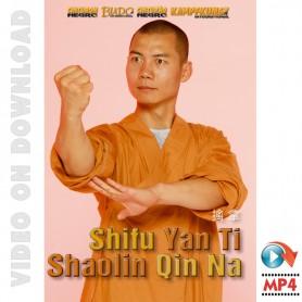 Shaolin Qin Na