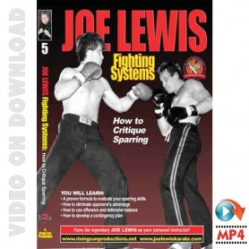 How to Critique Sparring. Joe Lewis Fighting Systems