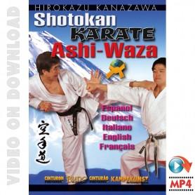 Mastering Shotokan Karate Ashi Waza. Vol.2